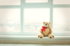 Cute teddy bear at home in white room is sitting near window. Alone bear waiting for a baby boy or girl. Royalty Free Stock Image