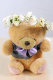 Cute teddy bear at isolated white Stock Images