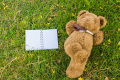 A cute teddy bear. A cute teddy bear lying on grass  and notebook to fill Royalty Free Stock Images