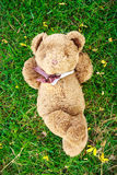 A cute teddy bear lying on grass  and notebook to fill. Royalty Free Stock Photography