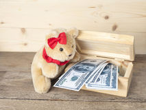 Cute teddy bear and money Royalty Free Stock Image