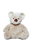 Cute Teddy bear over white Royalty Free Stock Images