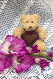 Cute teddy bear and pink gladiolus. Gift concept Stock Images