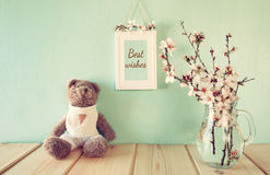 Cute teddy bear sitting next to spring cherry tree Royalty Free Stock Photo