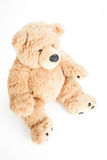 Cute teddy bear sitting. On a white place Stock Photo