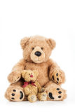 Cute teddy bear with small child. On whtie background Royalty Free Stock Photo