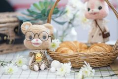 Cute teddy bear. Cute teddy bear sitting next to croissant basket with blurred pink bunny doll on the background. Toy photography royalty free stock image