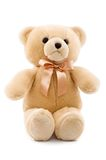 Cute teddy bear  on white background Stock Image