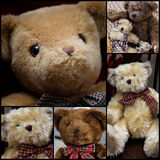 Cute Teddy Set Collage Stock Images