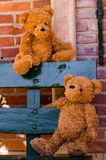 Cute teddybear couple. On a wooden bench with great colors Royalty Free Stock Photography