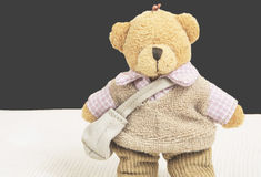 Cute Tedy bear dressed Stock Photography