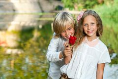 Cute teen boy giving rose to girlfriend. Royalty Free Stock Photo