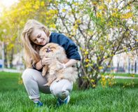 Cute teen girl with blond hair playing with her Pomeranian puppy. On green grass in the park Stock Image