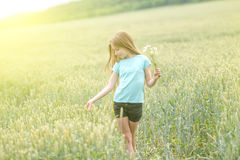 Cute teenage girl with charming smile picking daisies Royalty Free Stock Images