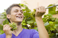 Cute teenager love grapes Stock Photo