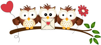 Cute Three Love Owls Royalty Free Stock Photo