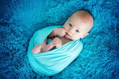 Cute three months old baby boy in blue wrap, lying on a blue bla Stock Photos
