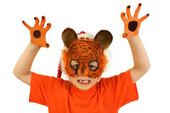 Cute tiger Stock Images