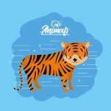 Cute tiger animal to natural wildlife. Vector illustration Royalty Free Stock Photo
