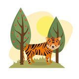 Cute tiger animal to natural wildlife. Vector illustration Royalty Free Stock Image