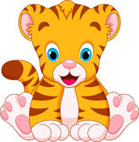 Cute tiger babies. Cubs are cute and adorable sitting Royalty Free Stock Images