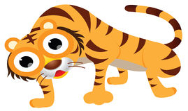 Cute tiger cartoon Stock Photos