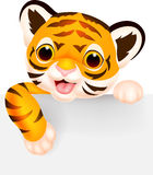 Cute tiger cartoon with blank sign. Illustration of Cute tiger cartoon with blank sign Royalty Free Stock Images