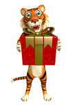 Cute Tiger cartoon character with giftbox Stock Images