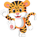 Cute tiger cartoon Royalty Free Stock Images