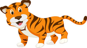 Cute tiger cartoon. Illustration of cute tiger cartoon isolated on white Royalty Free Stock Image