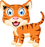 Cute tiger cartoon. Illustration of Cute tiger cartoon  on white Stock Photos