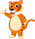 Cute tiger cartoon presenting Stock Photography