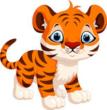 Cute tiger cartoon Royalty Free Stock Photo
