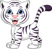 Cute tiger cartoon. On a white background Stock Images