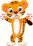 Cute tiger cartoon. Cute tiger with white background Stock Images