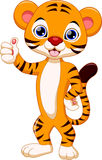 Cute tiger cartoon. Cute tiger with white background Stock Photography