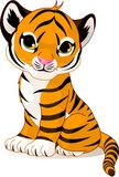 Cute tiger cub Royalty Free Stock Image