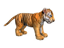 Cute tiger cub. 3D image on white. Cute tiger cub. 3D image on white background vector illustration