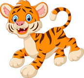 Cute tiger cub is smiling Royalty Free Stock Image