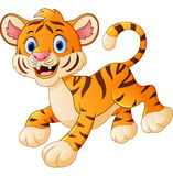 Cute tiger cub is smiling Royalty Free Stock Photos