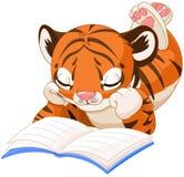 Cute Tiger Reading Stock Photo