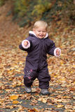 Cute todder in an autumnal park Stock Image