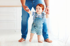 Cute toddler baby boy learning to walk with the help of the father Stock Photo