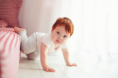 Cute toddler baby getting off the bed, crawling at home. Cute toddler baby boy getting off the bed, crawling at home Stock Image