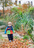 Cute toddler boy in autumn park Royalty Free Stock Photo