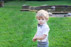 Cute toddler boy with blue eyes Royalty Free Stock Images