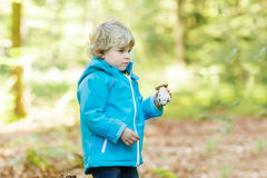 Cute toddler  boy in blue waterproof raincoat in autumn forest Royalty Free Stock Photos