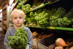 Cute toddler boy in a food store or a supermarket choosing fresh organic kale salad stock photography