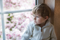 Cute toddler boy looking out of the window Royalty Free Stock Photography