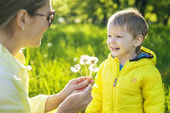 Cute toddler boy making a with before blowing dried dandelions Royalty Free Stock Photography